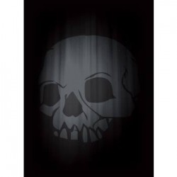 Legion - Matte Sleeves - Super Iconic - Skull (50 Sleeves)